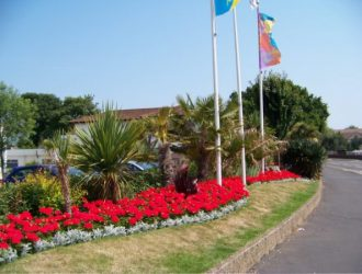 Flowers at Welcome Family Holiday Park Dawlish Warren Devon
