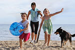 pet friendly holidays devon