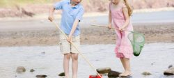 Children with fishing nets on the beach