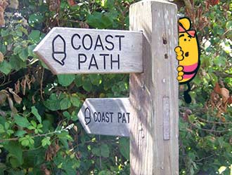 Dizzy the Bee is hiding behind a sign on the South West Coast Path
