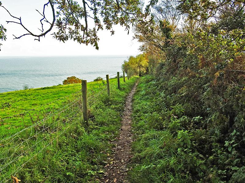 A coastal path on the South West Coast Path near Dawlish in South Devon.