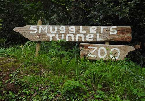 Smugglers Tunnel and Shaldon Zoo
