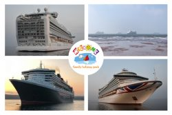 images of cruise liners in torbay